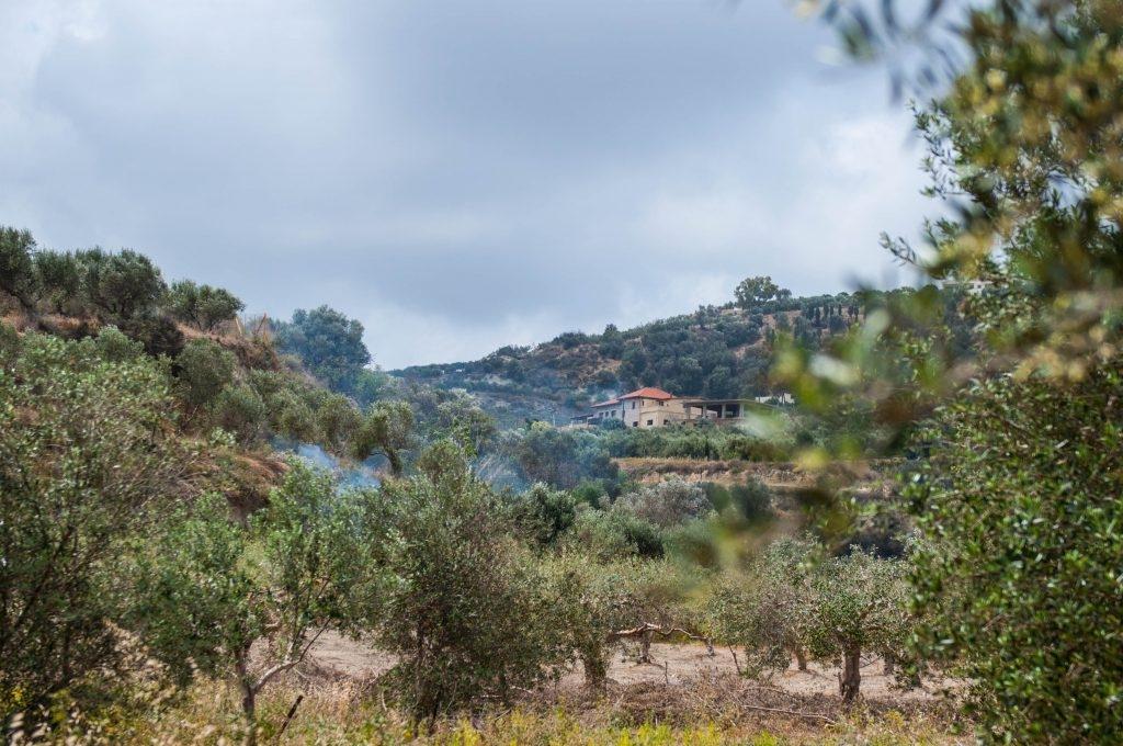 Op vakantie op Kreta? Ga eens naar Larani, Rogdia of Finikia! 1